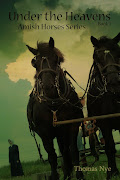 Click Here to learn more about the Amish Horses Series!