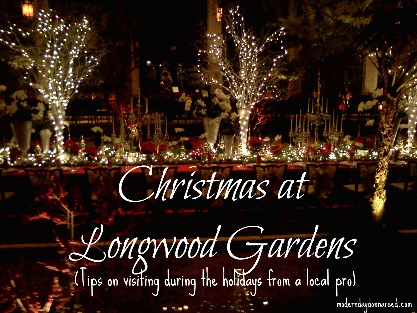 Longwood Gardens Christmas.A Longwood Christmas 2012 How To Make The Most Of Your