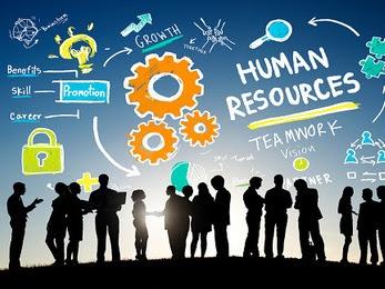 Divisi HR (Human Resource) pada Perusahaan dan Tugasnya