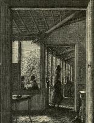 A journey in Brazil  1867 Travel pdf