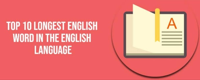 Top 10 Longest Words in English Language