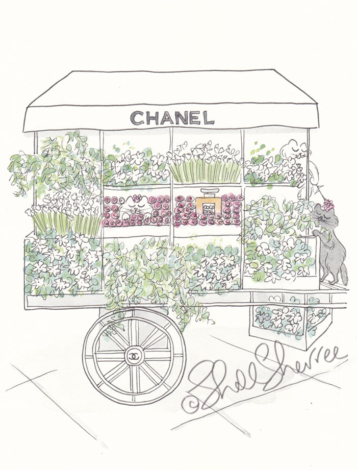 Chanel Flower Cart and Camouflage Cats Paris illustration  © Shell Sherree all rights reserved