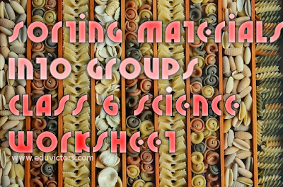 CBSE Class 6 Science - CH4: Sorting Materials Into Groups (Worksheet) (#cbsenotes)