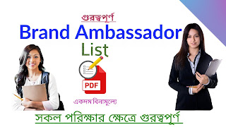 brand ambassador list in English pdf