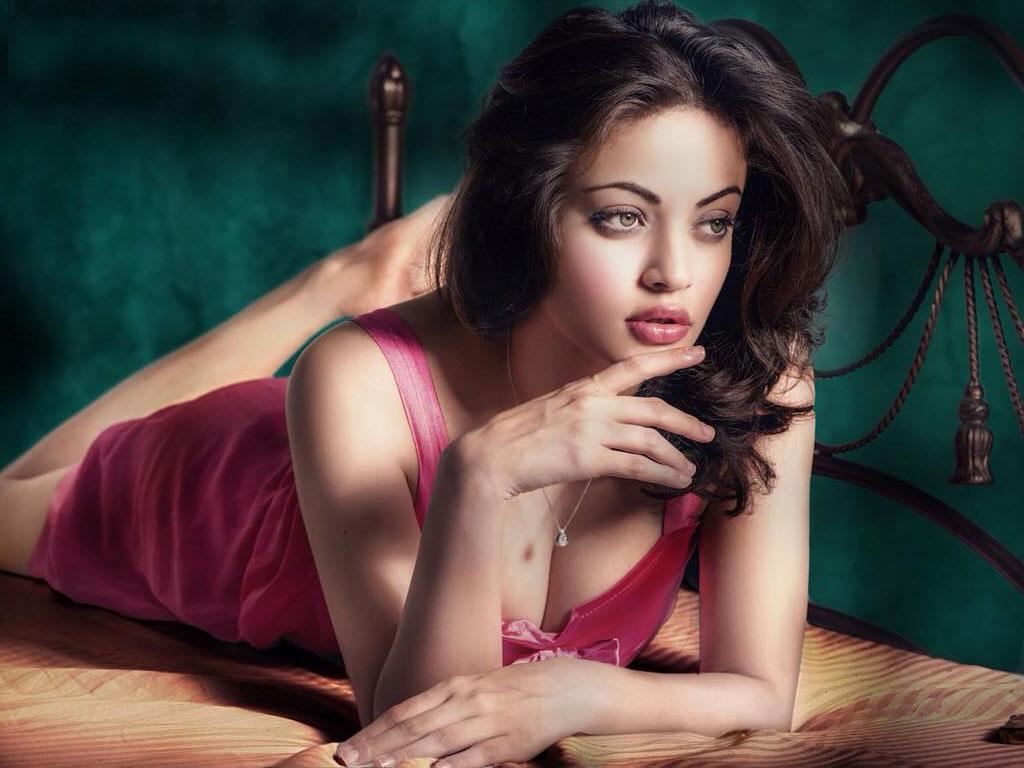Sneha Ullal Sexy Photos