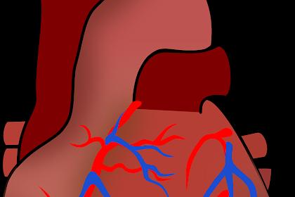 5 Tips Alami Menurunkan Kolesterol Dalam Tubuh