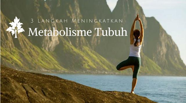 Langkah Mudah Meningkatkan Metabolisme Tubuh