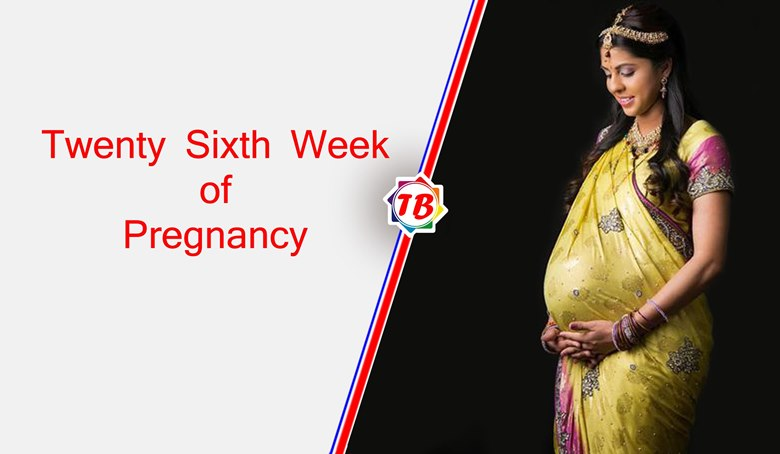 Twenty Sixth Week of Pregnancy