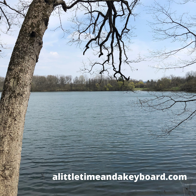 Spring tranquility at Beverly Lake.
