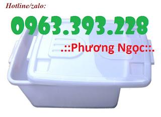 Thùng nhựa có nắp DA30, thùng nhựa bánh xe, hộp nhựa có nắp 1469518388_thung_nhua_co_nap_da_30