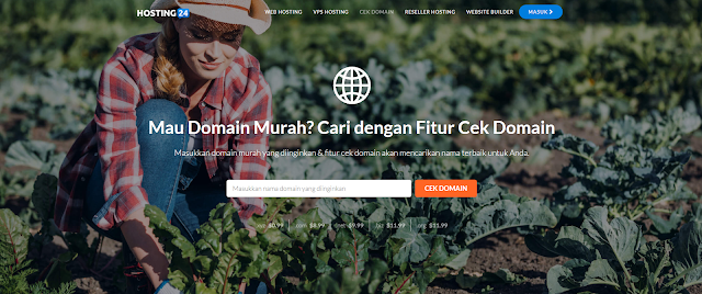 Fitur Cek Domain Web Hosting Indonesia Premium di Hosting24