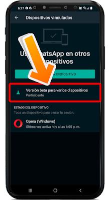 usar WhatsApp sin conexión a Internet