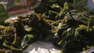 lime leaf and wild garlic flower salad