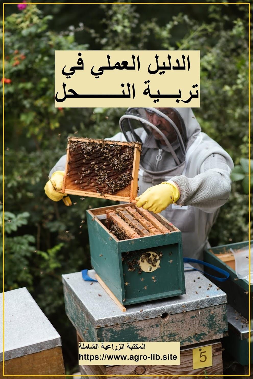 كتاب : الدليل العملي في تربية النحل