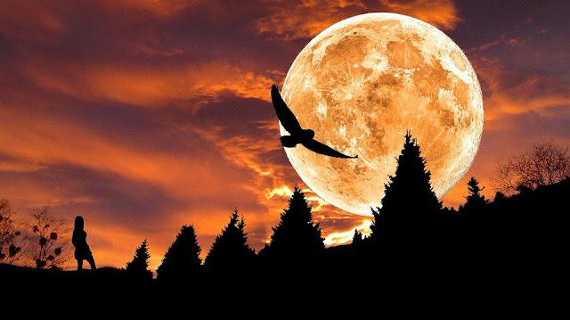 Πανσέληνος - Μερική Σεληνιακή Έκλειψη  30 Νοεμβρίου 2020  Μια εκρηκτική έκλειψη στους Διδύμους