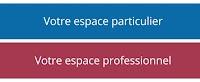 Application d'impôt pour paiement en ligne de la TVA sur les services électroniques (mini-guichet unique) en France et plusieurs pays de l'UE
