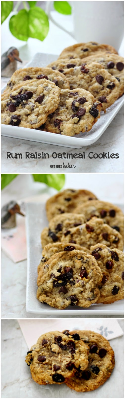 Rum Raisin Oatmeal Chocolate Chip Cookies are perfect for my girls night in!