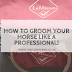 5 Steps To Grooming Your Horse Like  A Professional!