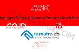 Alasan Mengapa Sebuah Domain Berperan Penting Untuk Bisnis