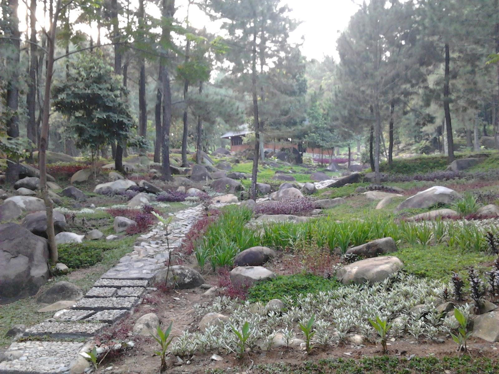 5 Abroad: Camping at Taman Wisata Alam Gunung Pancar
