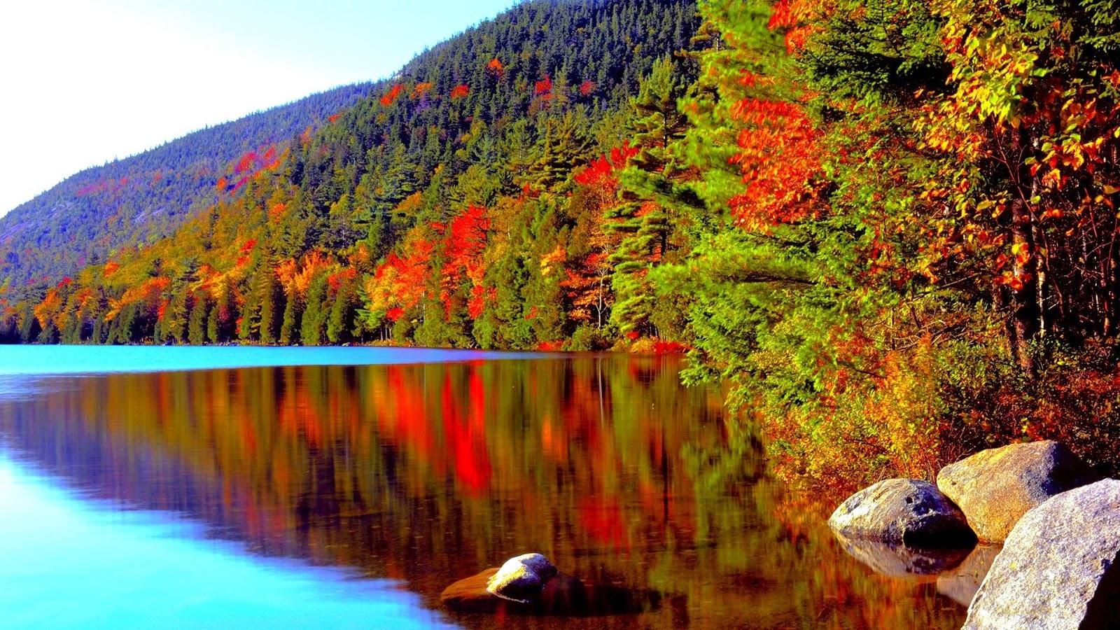 Acadia National Park Coast Sky Sea Trees :Acadia Tag wallpapers
