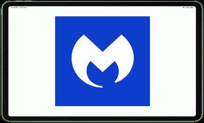 Malwarebytes Anti-Malware v3.7.2.1 Premium
