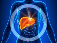 Alternative medicine for liver