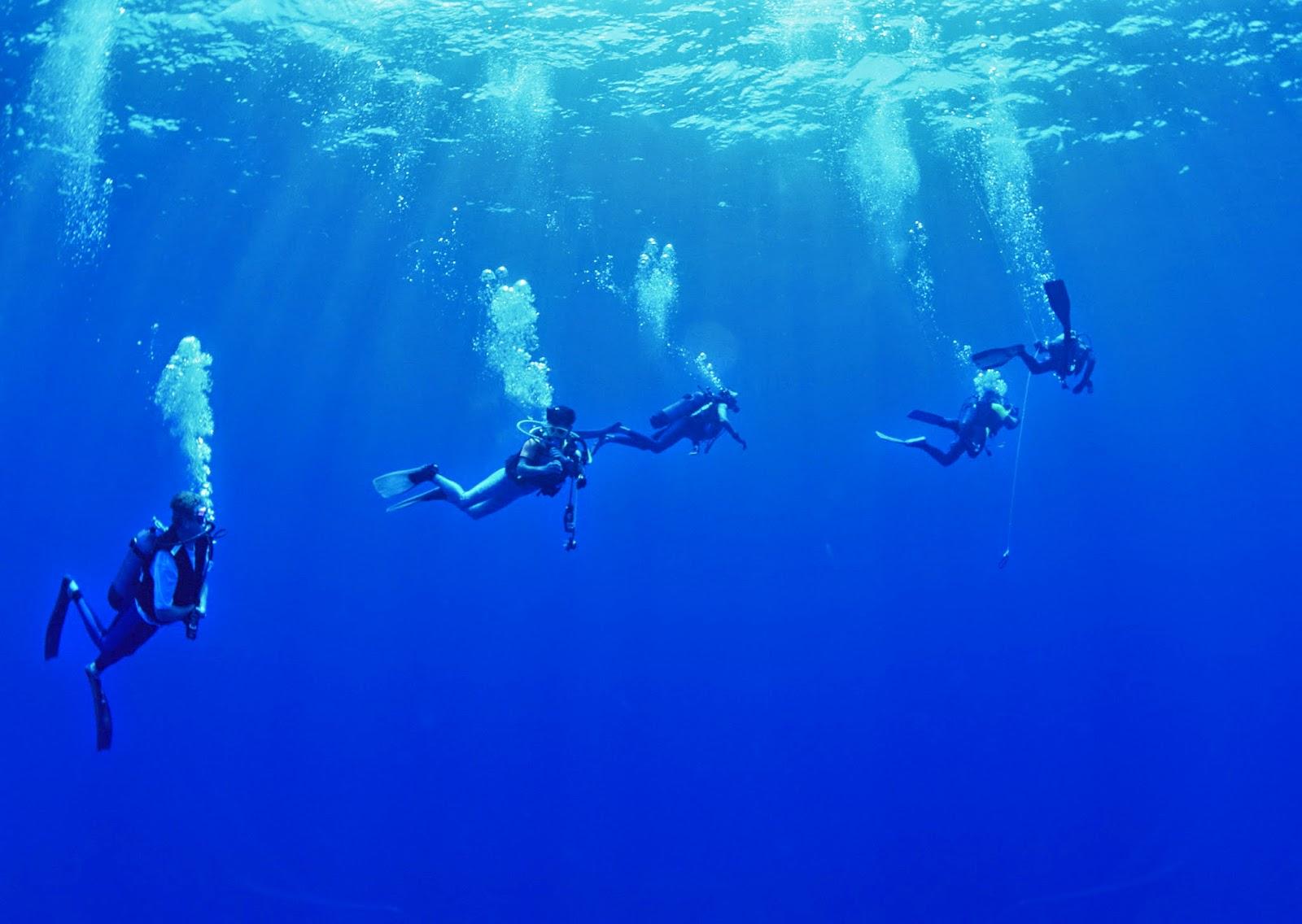 Scuba Diving Wallpaper Dive Tenerife