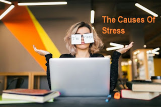 The Causes Of Stress