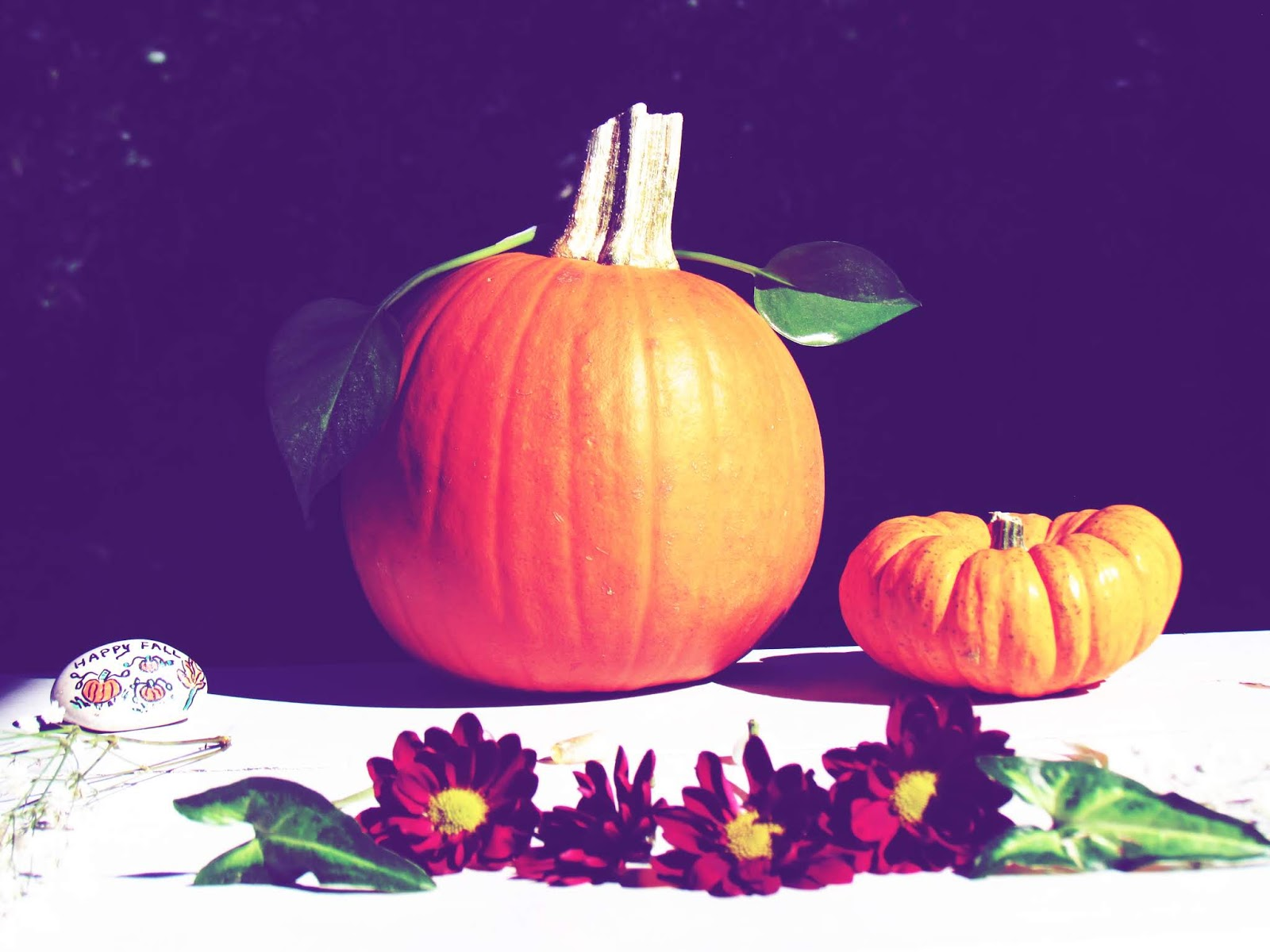 Pumpkin Art Display Martha Stewart Designs For Fall Celebrations