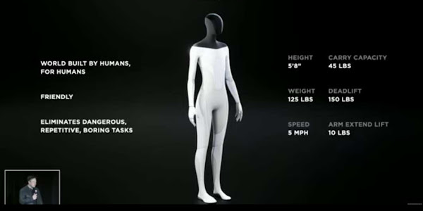 Tesla Bot: The Humanoid Robot Price, Release Date, What Can It Do?