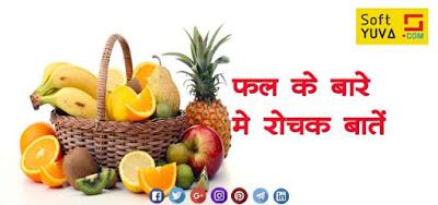 फल के बारे में  कुछ रोचक तथ्य  Interesting Facts About Fruits in Hindi