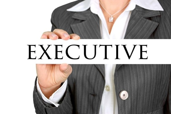 Sales Executive Who Can Lead