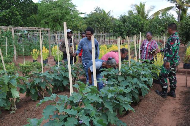 Dongkrak Hasil Panen, Prajurit Kostrad Berikan Penyuluhan Pertanian