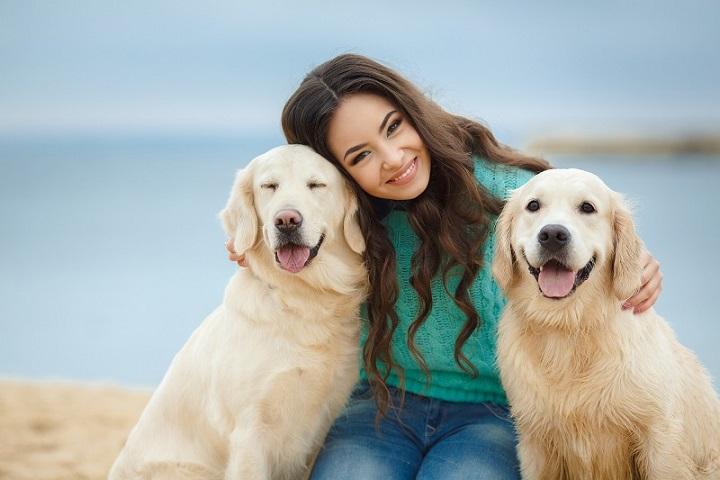 Mengapa Anjing Bisa Sangat Setia Pada Pemiliknya? Belajar Sampai Mati, belajarsampaimati.com, hoeda manis