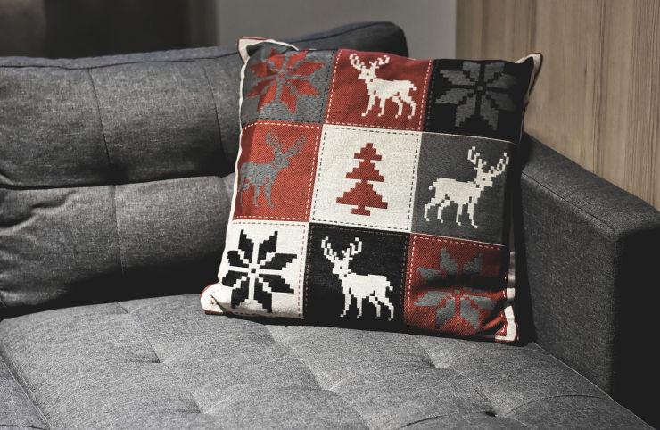 sofa and cushion