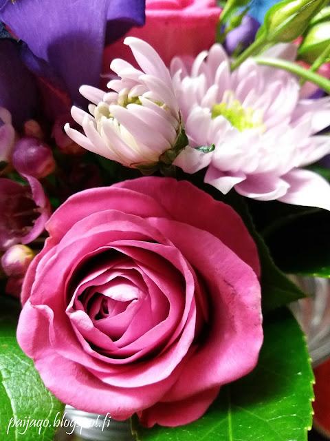 synttärikukat ruusu