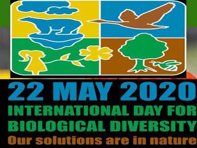 अंतरराष्ट्रीय जैव-विविधता दिवस | जैव-विविधता दिवस |