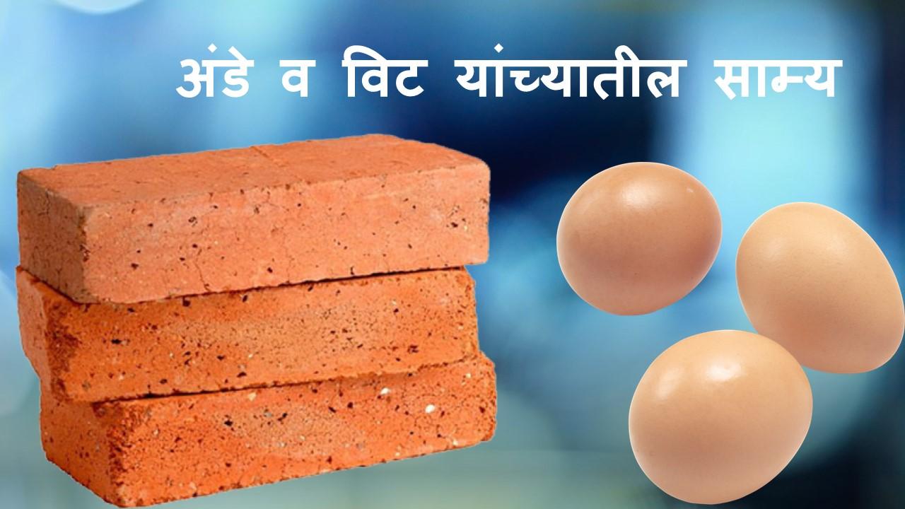 नैतिक कथा - अंडे व विट यांच्यातील साम्य | Nitin Banugade Patil