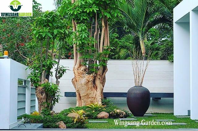 Tukang Taman Jakarta | Jasa Pembuatan Taman Jakarta