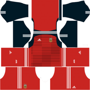 Argentina Copa America DLS 2019-2020