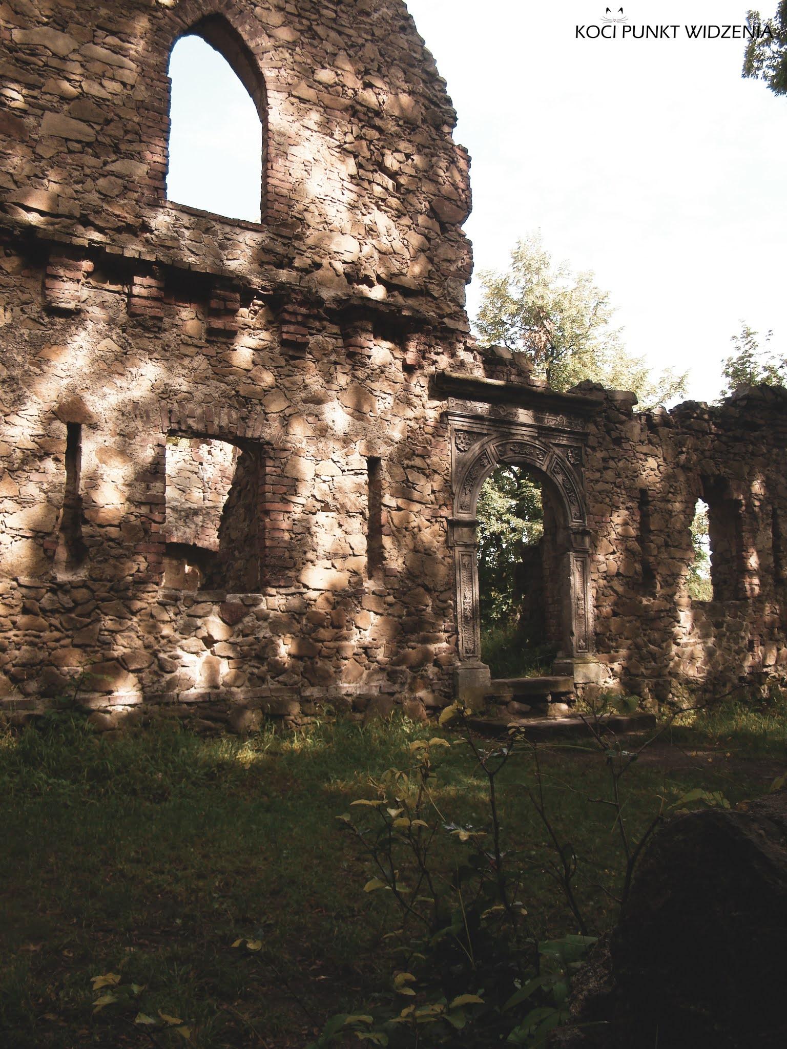 Stary Książ ruiny zamku