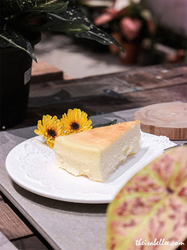 Rimba Lab plant cafe Penang cheesecake