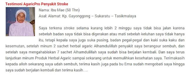 Pengobatan Stroke Secara Alami Tanpa Obat