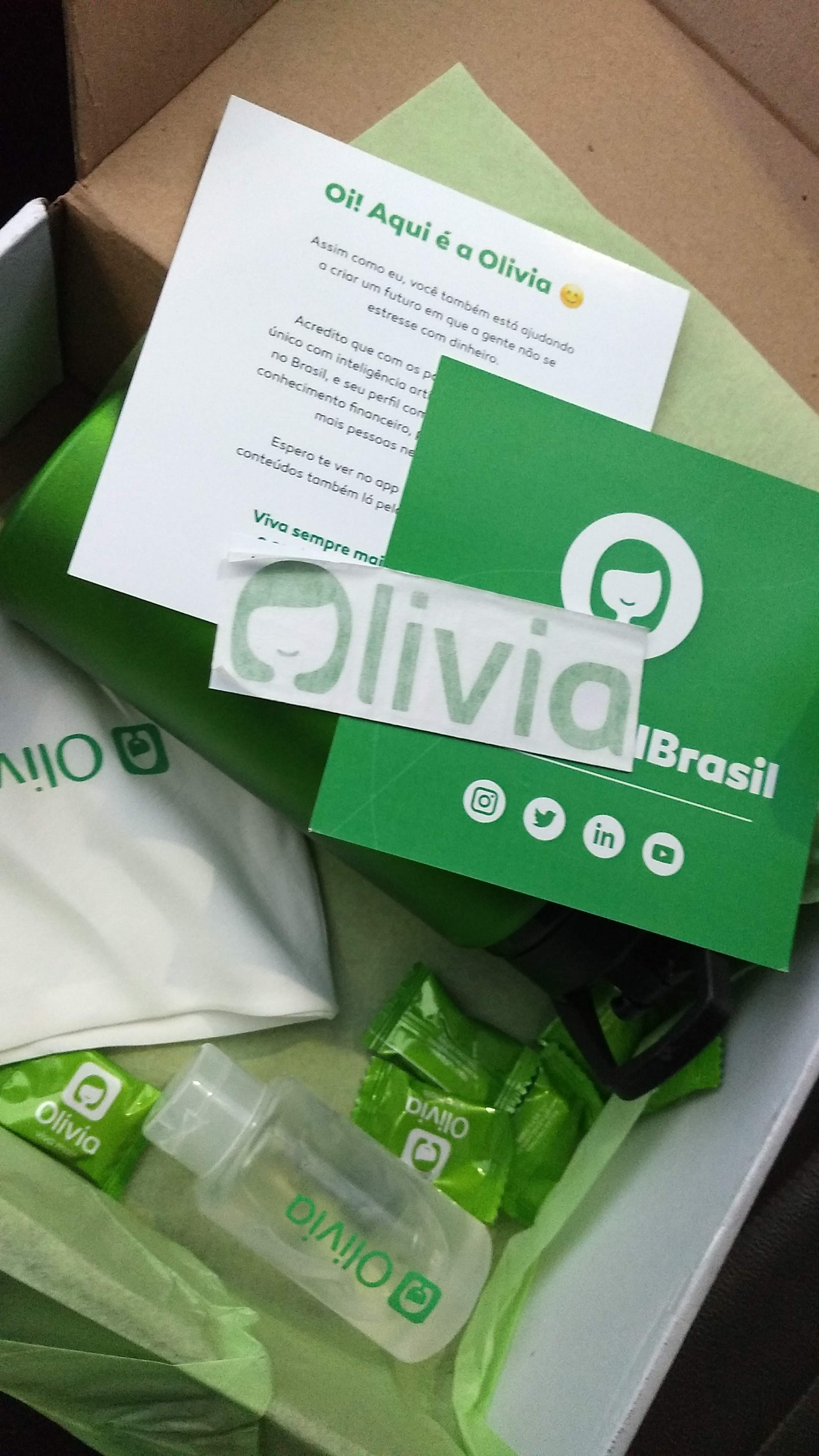 press kit Olivia app de organizacao financeira recebidos @truquesdemeninas resenha