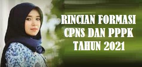 Rincian Formasi CPNS dan PPPK Pemerintah Kabupaten Aceh Tamiang  Provinsi Nanggroe Aceh DarussalamTahun 2021