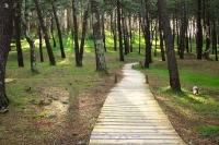 senderismo en galicia, coruña, ortegal, ven a hacer senderismo libre, turismo guiado a vía láctea