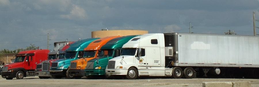 Camiones por el camino