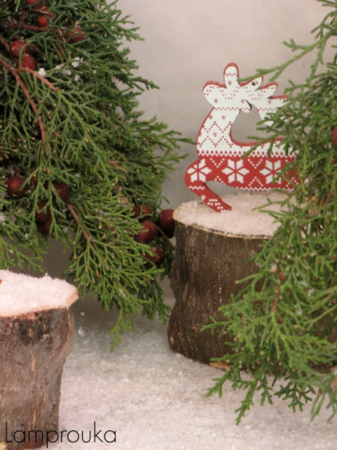 Φυσική διακόσμηση χριστουγέννων.