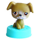 Littlest Pet Shop Special Boxer (#172) Pet